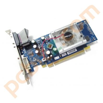 PNY GeForce 8400 GS DDR2 256MB PCI-E Graphics Card